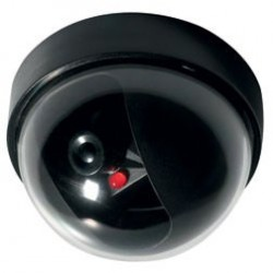 Telecamera LKM finta Dome con Sensore di movimento e LED