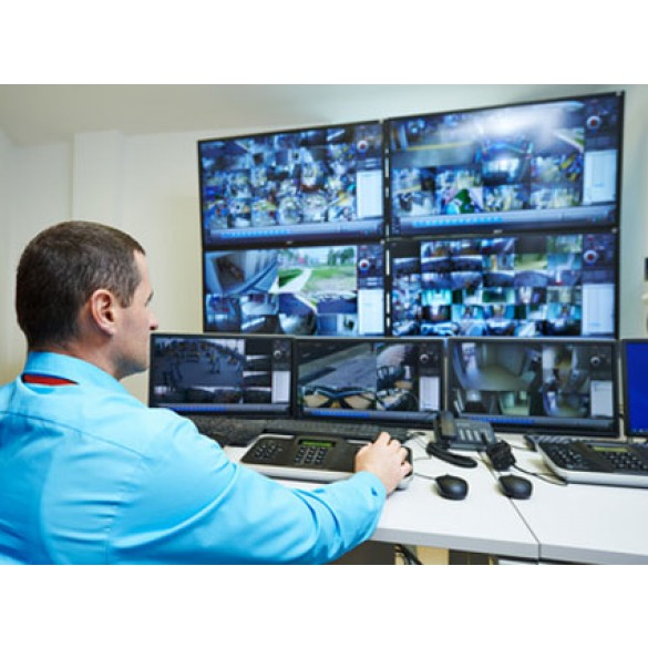 Servizio Controllo remoto dell'impianto di videosorveglianza
