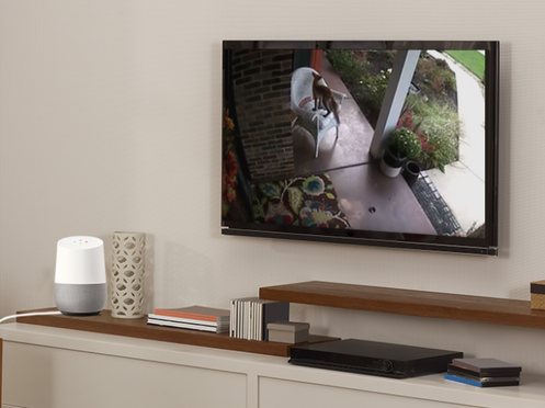 Google Assistant & Arlo IPCam Telecamera